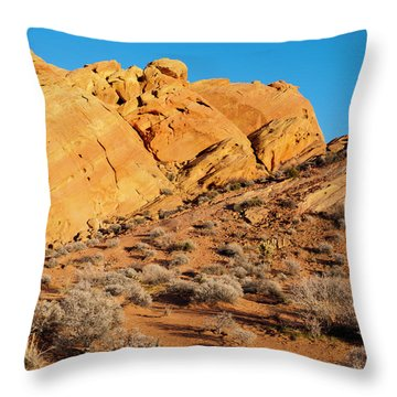 Rainbow Vista Throw Pillow by Rae Tucker