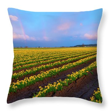 Throw Pillow featuring the photograph Rainbows, Daffodils And Sunset by Mike Dawson