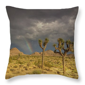 Rainbows Thunderstorms And Sunsets Throw Pillow