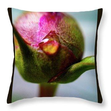 Raindrop On Peonie Throw Pillow
