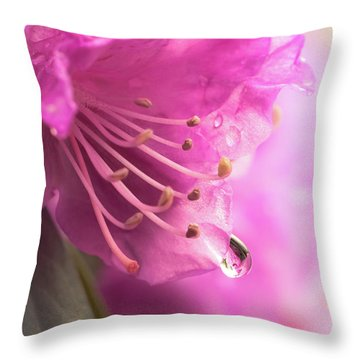 Raindrop On Rhododenron Throw Pillow by Jim Hughes