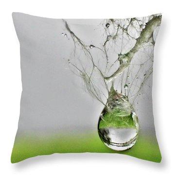 Raindrop On Web Throw Pillow
