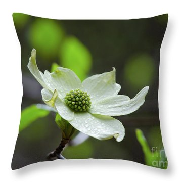Raindrops Keep Falling Throw Pillow by Debby Pueschel