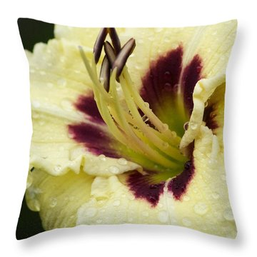 Raindrops On A Petal Throw Pillow by Tiffany Erdman