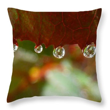 Throw Pillow featuring the photograph Raindrops On A Red Leaf by Patricia Strand
