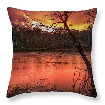 Raindrops On Nullica Throw Pillow