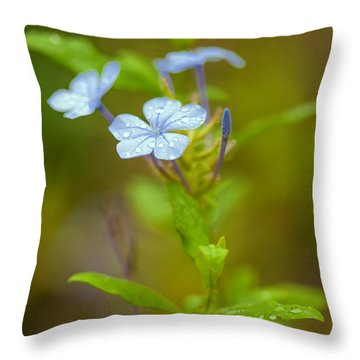 Raindrops On Petals Throw Pillow