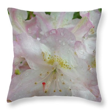 Raindrops On Rhododendron Throw Pillow