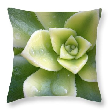 Throw Pillow featuring the photograph Raindrops On The Succulent by Elvira Butler