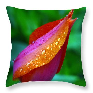 Raindrops On Tulip Throw Pillow