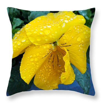 Throw Pillow featuring the photograph Raindrops On Yellow Pansy by E Faithe Lester