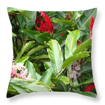 Rainforest Beauty Throw Pillow by Lois Lepisto