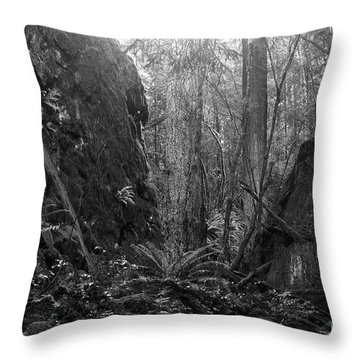 Throw Pillow featuring the photograph Rainforest Black And White by Sharon Talson