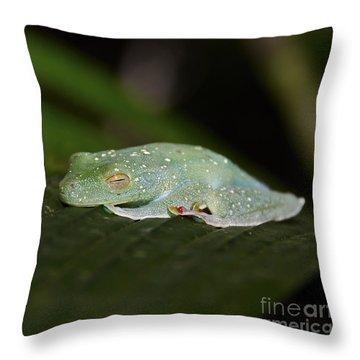 Rainforest Detail.. Throw Pillow by Nina Stavlund