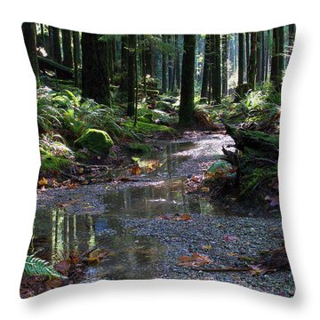 Throw Pillow featuring the photograph Rainforest Trail 2 by Sharon Talson