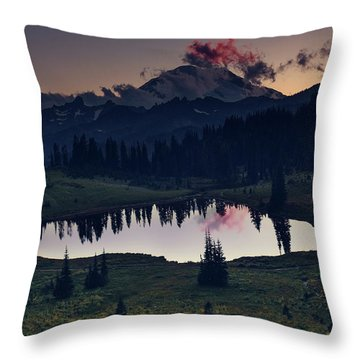 Rainier Color Throw Pillow