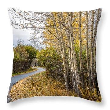 Rainy Autumn Walk Throw Pillow