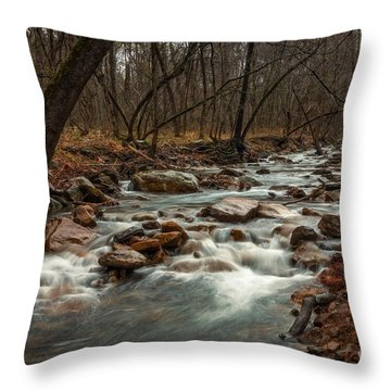 Rainy Day At Lee Creek Throw Pillow