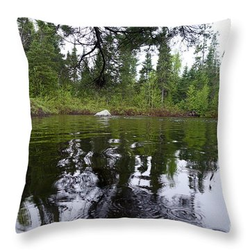 Throw Pillow featuring the photograph Rainy Day Beauty by Sandra Updyke