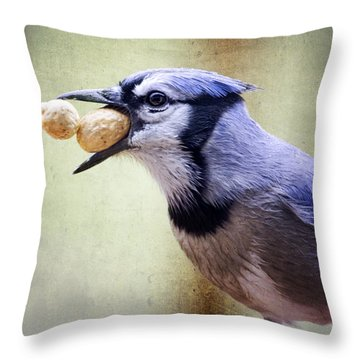 Rainy Day Blue Jay Throw Pillow