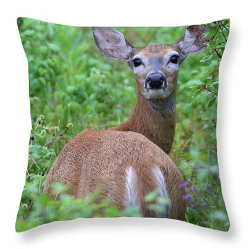 Rainy Day Doe Throw Pillow