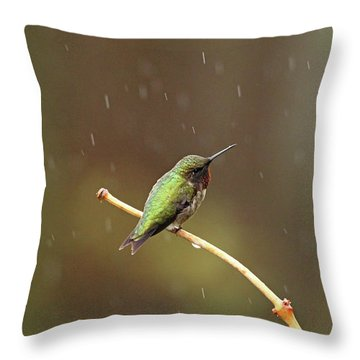 Rainy Day Hummingbird Throw Pillow