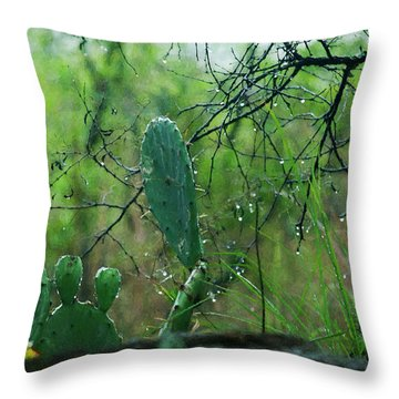 Rainy Day In Central Texas Throw Pillow