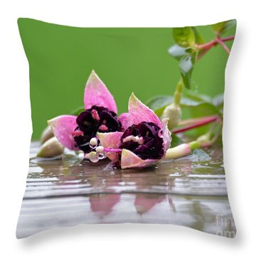 Throw Pillow featuring the photograph Rainy Day by Lila Fisher-Wenzel