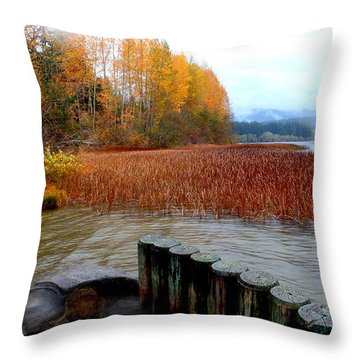 Rainy Day On Lake Padden Throw Pillow by Karen Molenaar Terrell