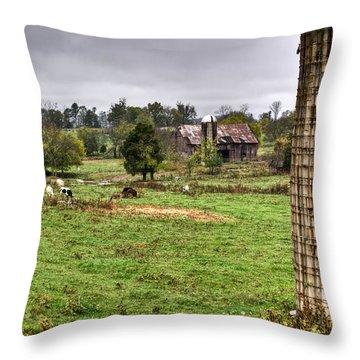 Rainy Day On The Farm Throw Pillow by Douglas Barnett