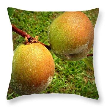 Rainy Day Peaches Throw Pillow by Joyce Dickens