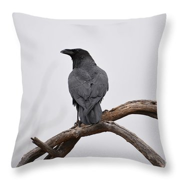 Rainy Day Raven Throw Pillow