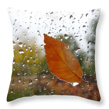 Rainy Day Visitor Throw Pillow