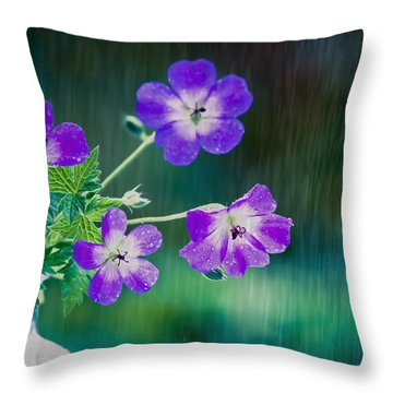 Throw Pillow featuring the photograph Rainy Days And Mondays by Jan Bickerton
