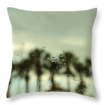 Rainy Daze Throw Pillow by Christopher L Thomley
