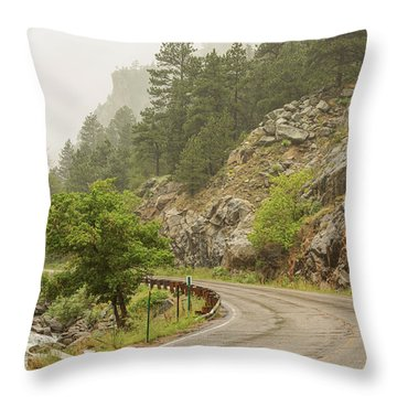 Throw Pillow featuring the photograph Rainy Misty Boulder Creek And Boulder Canyon Drive by James BO Insogna