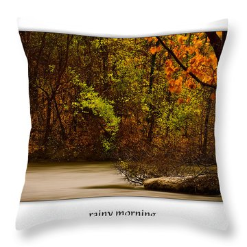 Rainy Morning Throw Pillow