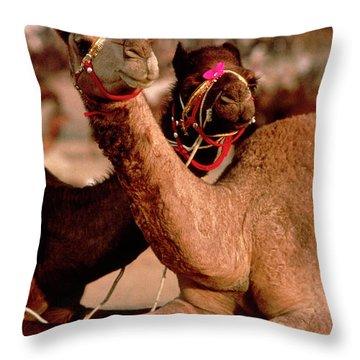 Rajasthan_21-19 Throw Pillow