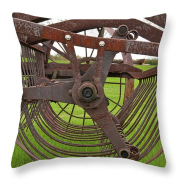 Throw Pillow featuring the photograph Rake 3118 by Guy Whiteley