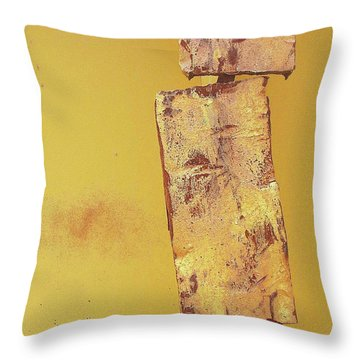 Raleigh Iron Throw Pillow