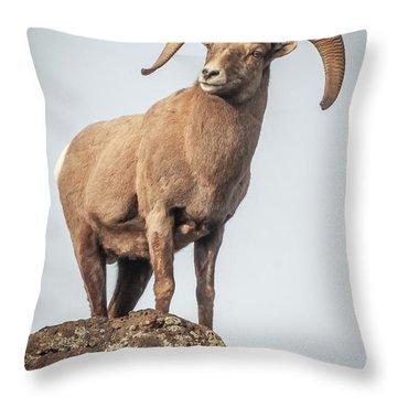 Throw Pillow featuring the photograph Ram Of The Rio Grande by Britt Runyon