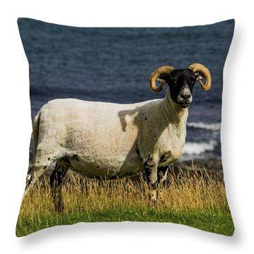 Ram With Attitude Throw Pillow