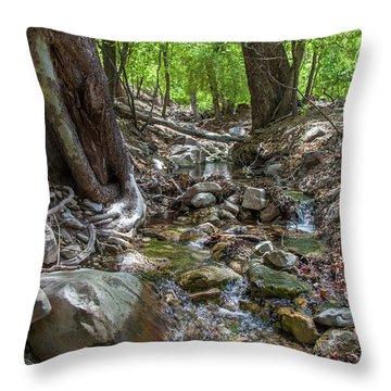 Ramsey Canyon Preserve Throw Pillow
