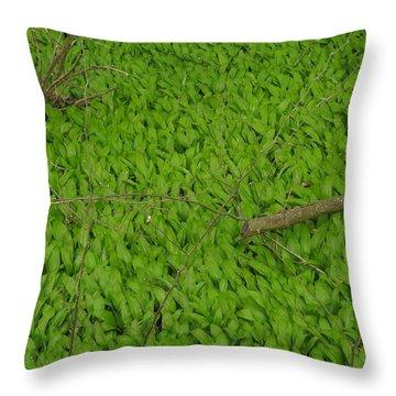 Ramsons  Throw Pillow