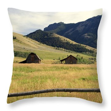 Ranch Along Tom Miner Road Throw Pillow by Marty Koch