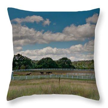 Ranch Throw Pillow
