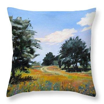 Ranch Road Near Bandera Texas Throw Pillow