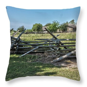 Ranch View1 Throw Pillow