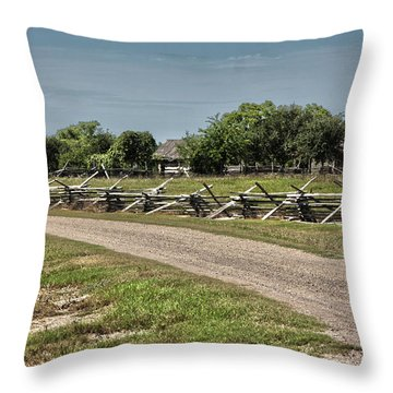 Ranch View3 Throw Pillow