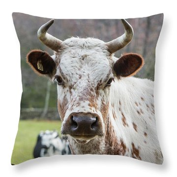Throw Pillow featuring the photograph Randall Cow by Bill Wakeley